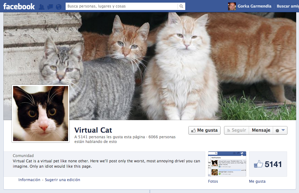 My-virtual-cat-facebook